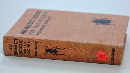 hildegard-books-helen_web